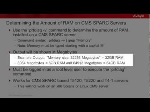 Determining The Amount Of RAM In CMS SPARC Servers