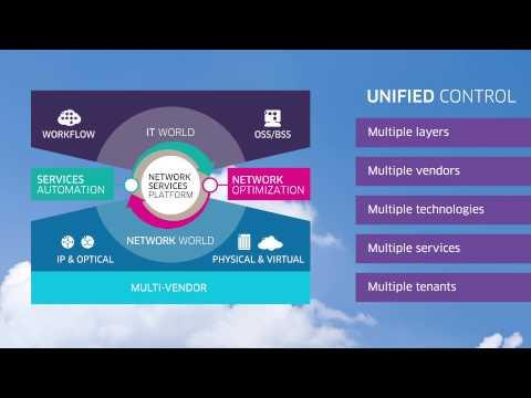 Alcatel-Lucent Network Services Platform: Carrier SDN For The On-demand Network