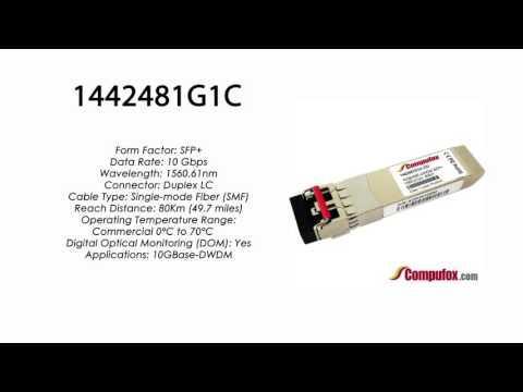 1442481G1C  |  Adtran Compatible 10GBase-DWDM 1560.61nm 80km SFP+