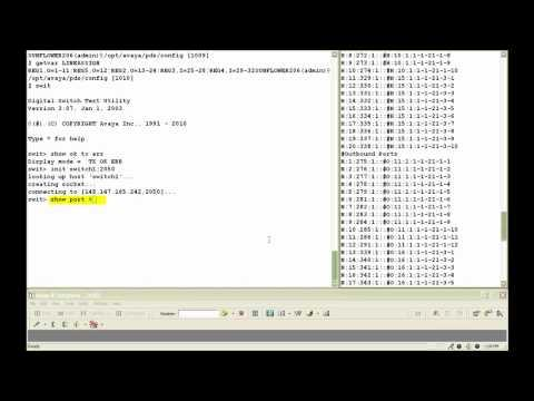 How To Use Swit Utility To Monitor Phone Lines (ISDN) In Avaya Proactive Contact