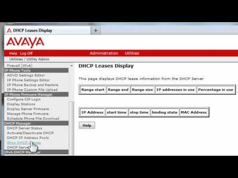 How To Setup The Avaya Communication Manager Utility Server IPv4 DHCP Server