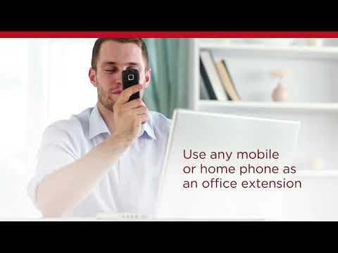 Avaya IP Office In The Cloud   Mobility