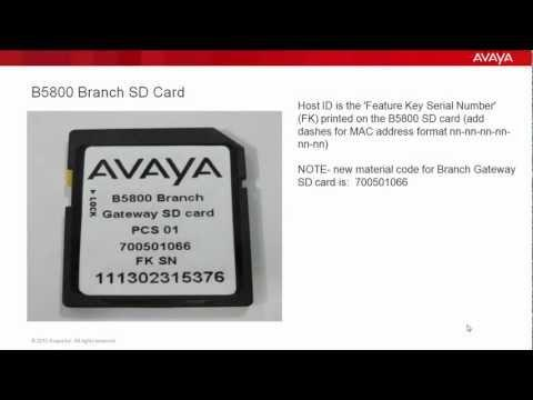 How To Deploy A PLDS License File On An Avaya B5800 Branch Gateway R6.1