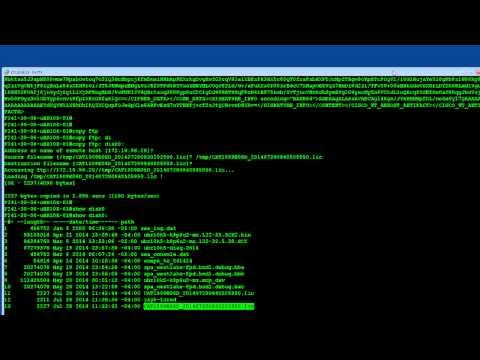 EoDB3: How-To Transfer Licenses From A Line Card To A Token And Adjust Your Active Licenses (2 Of 2)
