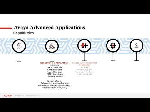 Avaya Professional Services Advanced Applications