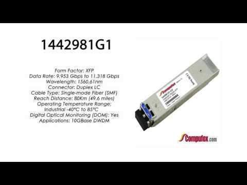 1442981G1 | Adtran Compatible 11.3G DWDM XFP 1560.61nm 80km