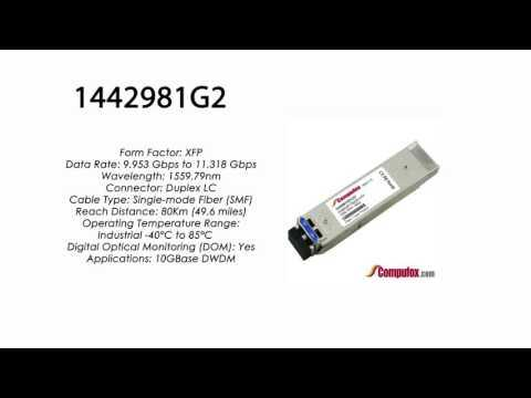 1442981G2  |  Adtran Compatible 11.3G DWDM XFP 1559.79nm 80km LC