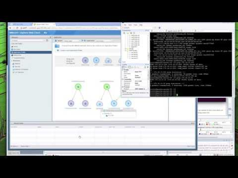 Cisco ACI Microsegmentation Demo Via VMware VCenter