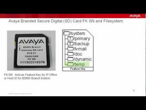 Avaya IP Office And Avaya B5800 Branch Gateway SD Card Management